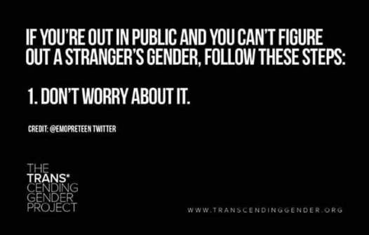 Text image by The Trans* Cending Gender Project with credit to twitter user @emopreteen. Quote reads: If you're out in public and you can't figure out a person's gender, follow these steps: 1. Don't worry about it.